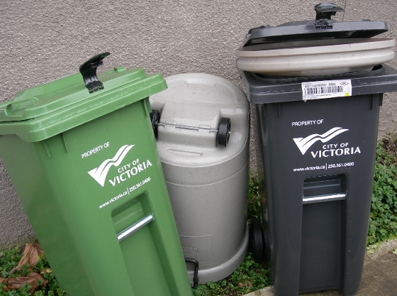 Here see the shiny new trash cans bullying the old, perfectly good, old trash can. The new grey guy is, in fact, eating the old guys lid!